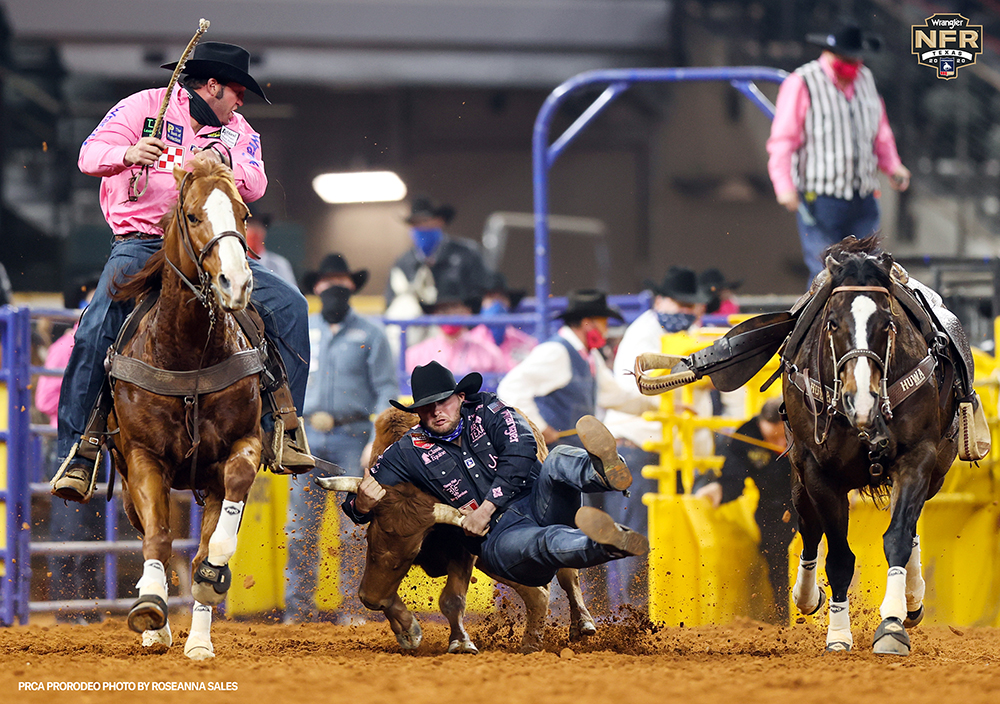 Jace Melvin grabs his steer en route to a 3.9-second run, which shared Monday's fifth-round victory at the National Finals Rodeo. (PRCA PRORODEO PHOTO BY ROSANNA SALES)