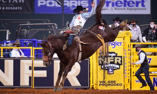Clayton Biglow rides Hi Lo Pro Rodeo's Redzilla for 88 points to finish fourth in Saturday's 10th round of the National Finals Rodeo. (PHOTO BY JAMES PHIFER)
