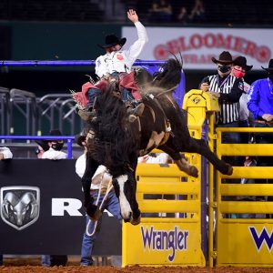 Clayton Biglow rides Three Hills Rodeo's Devil's Advocate for 85.5 points to finish fourth in Friday's ninth round of the National Finals Rodeo. (PHOTO BY JAMES PHIFER)