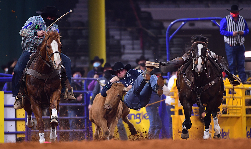 Jace Melvin puts the finishing touches to his 4.1-second run during Thursday's first go-round of the National Finals Rodeo. (PHOTO BY JAMES PHIFER)