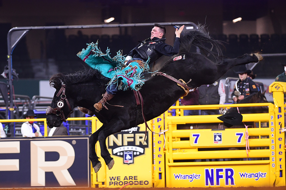 Jess Pope rides Cervi's William Wallace for 87 points to split second place in Thursday's first round of the National Finals Rodeo. (PHOTO BY JAMES PHIFER)