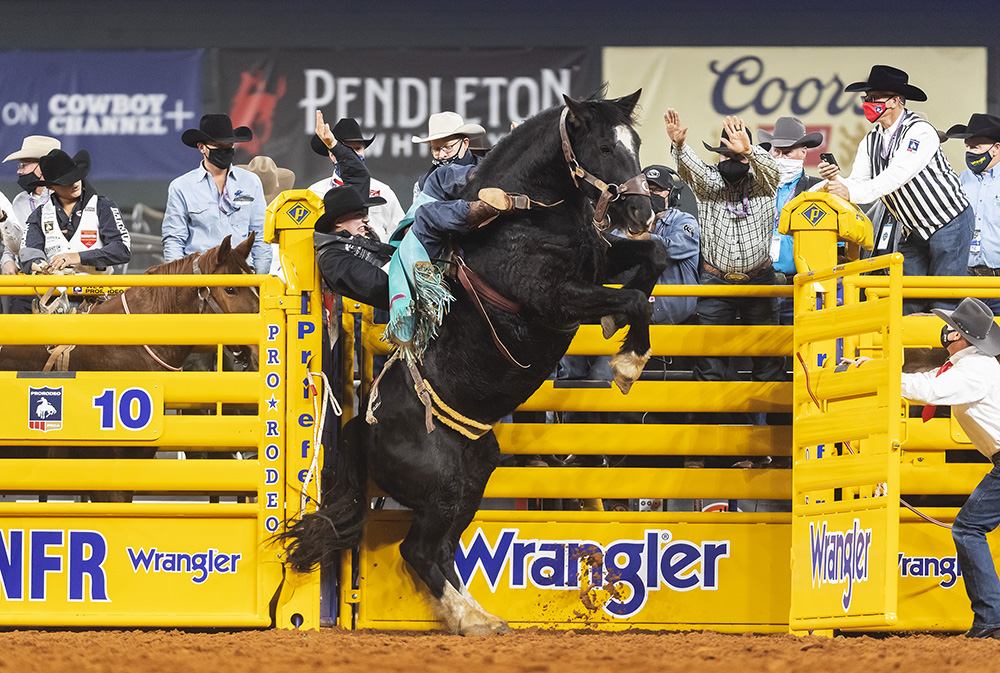 Jess Pope hangs on tight as C5 Rodeo's Black Eye rears out of the chute during Saturday's third go-round of the National Finals Rodeo. (PHOTO BY JAMES PHIFER)
