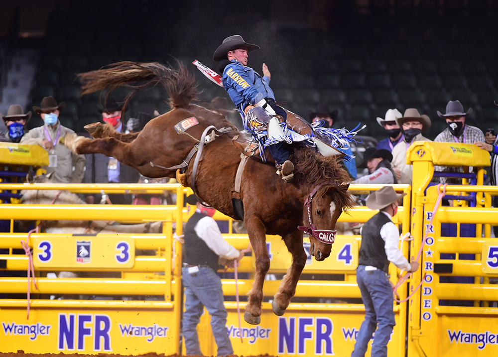 Chad Rutherford rides Calgary Stampede's Agent Lynx for 84.5 points to finish sixth during the first round of his first National Finals Rodeo. (PHOTO BY JAMES PHIFER)